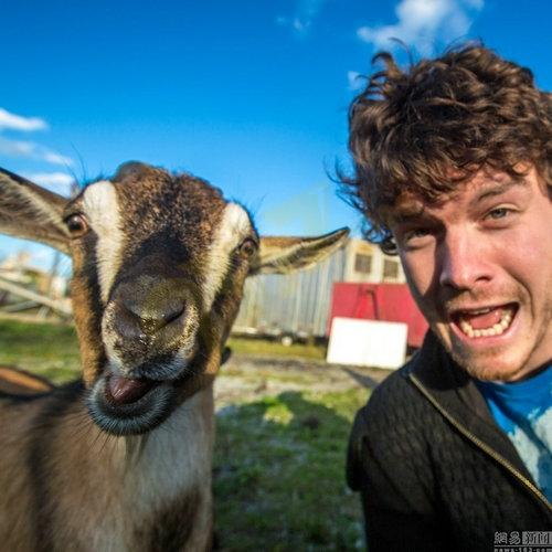与动物微笑合影走红 网友:动物界也要过圣诞节啦